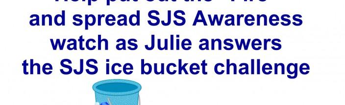 ice bucket-001